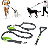 Dog Lead,Hands Free Dog Leads-Dual Usage with Adjustable Waist Belt and Extra Handle Walking Bungee Leash,Reflective Strip for Jogging, Running, Walking, Hiking(Grey and Green)