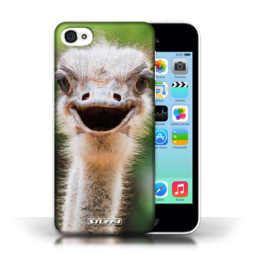 Kobalt Lupo stampato Custodia Cover per Apple iPhone 5C cellulari telefoni / Collezione Animali selvatici Struzzo/emu