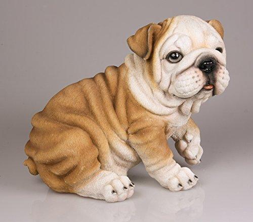 Stone-Lite - Statuetta - Bulldog piccolo - 13 cm - una guardiano tenerissimo per la vostra