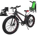 AIMADO 26 Zoll E-Bike klappbar Elektrofahrrad 36V 250W Li-Ion Akku Mountainbike mit Klapprahmen und Lenker Display PAS und Electric mode (Schwarz 2)
