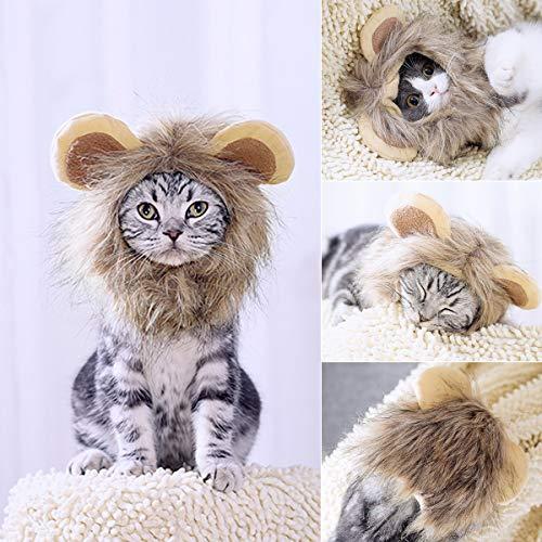 Namsan kostüm für Katzen Hunde Löwe Haar Kopfbedeckung für Halloween Weihnachten Festival Party (Löwe Kostüm Haar)