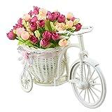 TiedRibbons® Cycle shape Flower Vase ...