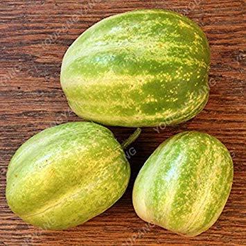 VISTARIC 5: Mixte Tomates cerises Saint Fruit Tomate Graine exotiques savoureux fruit juteux légumes Graine culture facile 120 Pcs plantes ornementales 5