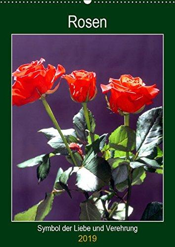 Rosen - Symbol der Liebe und Verehrung (Wandkalender 2019 DIN A2 hoch): Rosenkalender - das besondere Geschenk (Planer, 14 Seiten ) (CALVENDO Kunst)