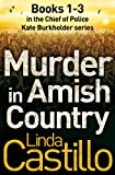 Front cover for the book Murder in Amish Country by Linda Castillo
