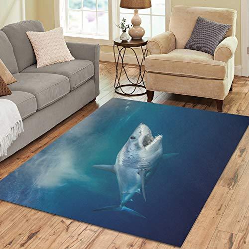 Wietops Heftige Awful Shark Große benutzerdefinierte Rutschfeste Moderne Bodenfläche Teppich Pad Matte orientalischen kommerziellen Teppich für Keller Schlafzimmer Wohnzimmer Home Decor 5'x7 'Indoor