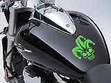 Calavera Joker Moto Depósito de combustible Coche Adhesivo 100mm x 115mm–Vivid Verde
