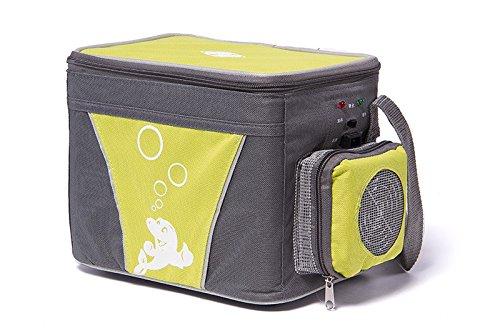 Preisvergleich Produktbild Revesun cw-6l Thermoelektrischer Kühler und Wärmer Tasche (rot) geeignet für Getränke,  Lebensmittel und Fruit Fresh Aufbewahrung und Erhaltung kleinen Körper und großes Fassungsvermögen