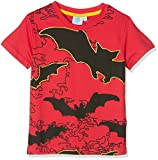 FABTASTICS Jungen T-Shirt mit Fledermäusen Lego Batman