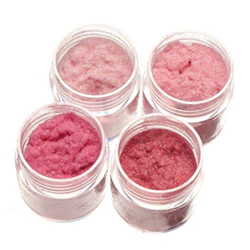 KINGDUO 4 Farben Nageldekreationen Pult Dust Velvet Manicure DIY Design Red Pink