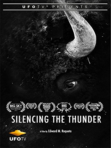 Silencing The Thunder Cover