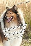 L'EDUCATION DU COLLEY: Toutes les astuces pour un Colley bien éduqué...