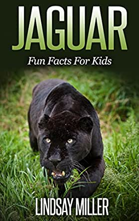 ... Jaguar: Fun Facts For Kids