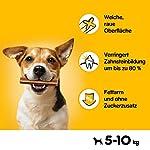Pedigree DentaStix - Daily Dental Chews for Medium Dogs (10-25 kg), 70 Sticks 11