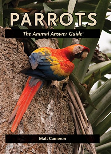 Parrots (The Animal Answer Guides: Q&A for the Curious Naturalist) (English Edition) -