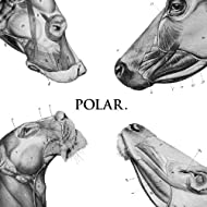 This Polar Noise - EP [Explicit]