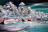 MASHICHEN Dipingere con i Numeri Fai da Te Adulti Che verniciano i corredi del Regalo del Mare del Vento di Palma della Tela di Canapa Decorazione Domestica di Arte -(40X50Cm) con Cornice