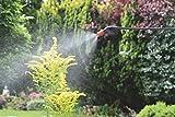 Spear & Jackson Pump Action Pressure Sprayer, 5 L Bild 4