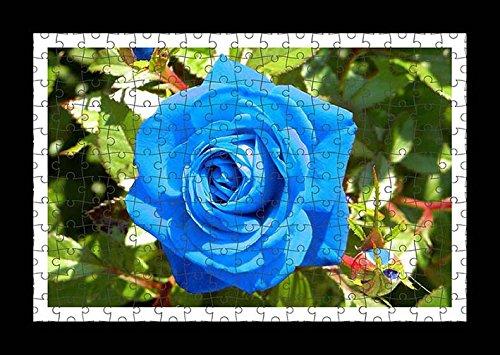 puzzle-style-pre-assembles-imprimer-mur-de-rose-flower-buds-blue-light-by-lisa-loft