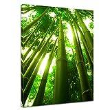 """Bilderdepot24 Leinwandbild """"Bambus in Thailand"""" - 60x80 cm 1 teilig - fertig gerahmt, direkt vom Hersteller"""