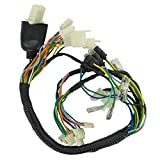 Xfight-Parts Kabelbaum AC-6 (Tacho) 4Takt Roller GMX 550 AA-1070402-2-550 für Otto Versand Rex RS 400
