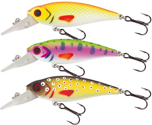 Wobbler Forellen angeln. Jackson Forellenwobbler 5.0 Rainbow Trout Wobbler.