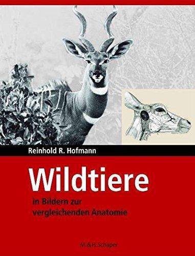 Wildtiere in Bildern zur Vergleichenden Anatomie by Reinhold R. Hofmann (2006-12-31) par Reinhold R. Hofmann