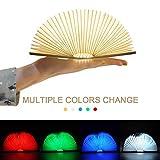 LED Buch lampe,LED Stimmungslicht mit 700 mAh Akku Lithium Nachttischlampe,Schreibtisch Lampe ideal als Buchlampe Tischlampe Wandleuchte Innenbeleuchtung,Konvertierbare Farbe(Mehrfarbig)