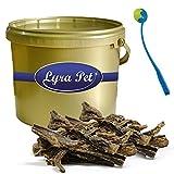 4 kg Rindereuter Lyra Pet Dog Premium Kausnack Hund im Eimer GOLD+ Ballschleuder