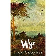 Wye: A Zombie Novel