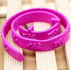 Fastpet Chat anti puces contre les tiques pour animal domestique protection Colliers Collier Rose rouge