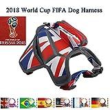 National Flagge keine Pull Hundegeschirr, 2018Russland Fußball Fußballspiel verstellbar atmungsaktiv Reflektierende Massage Pet Weste mit Namensschild für kleine/mittelgroße/große Hunde Outdoor Walking