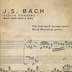 Violin Sonata in E minor, BWV 1023 (arr. V. Hoh for violin and guitar): IV. Gigue