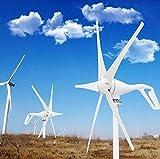 Haosan Haosan Windturbine, 5-Blatt-Wind-Generator 400W 12V Wasserdicht Steuer