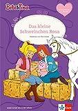 Bibi & Tina: Das kleine Schweinchen Rosa: Leseanfänger 1. Klasse ab 6 Jahren (A5 Lese-Heft) (Lesen lernen mit Bibi und Tina)