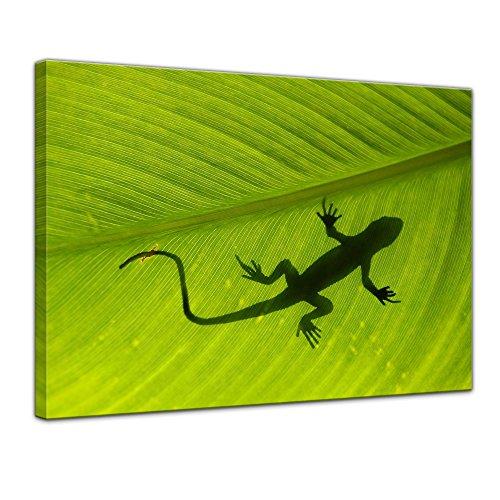 Keilrahmenbild - Gecko - Bild auf Leinwand 120 x 90 cm - Leinwandbilder - Bilder als Leinwanddruck - Tierwelten - Natur - Gecko auf Einem grünen Blatt (Gecko Lebensraum)