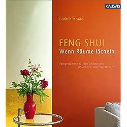 Feng Shui – Wenn Räume lächeln: Farbgestaltung mit den 5 Elementen – ein Arbeits- und Projektebuch