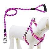 Helios Hundeleine mit Halsband und Clip, Hundegeschirr aus Nylon mit bequemem geschäumtem Griff, keine Zugkraft, klein, Pink