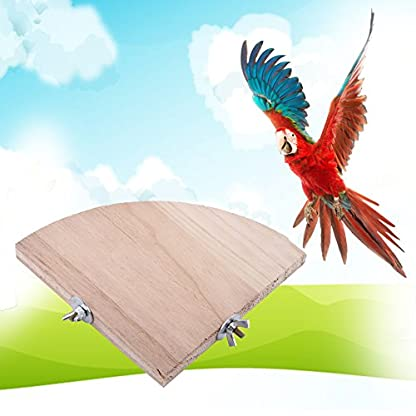 Fdit Platform Wood Bird Cage Perch Stand Fan Shape Parrot Hamster Small Animal Pet Budgie Toy(13 * 13Cm/5 * 5Inch) 7