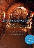 Die unterirdische Stadt Oppenheim. Von der Schattenwelt zum Erlebnisraum - Thomas Ehlke