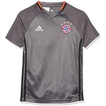 adidas Fcb Trg Jsy Y Camiseta Entrenamiento Fc Barcelona, Niños, Gris (Granit), 164
