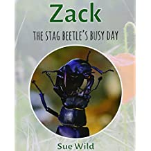 Zack: The stag beetle's busy day: Volume 1 (Invertebrates)