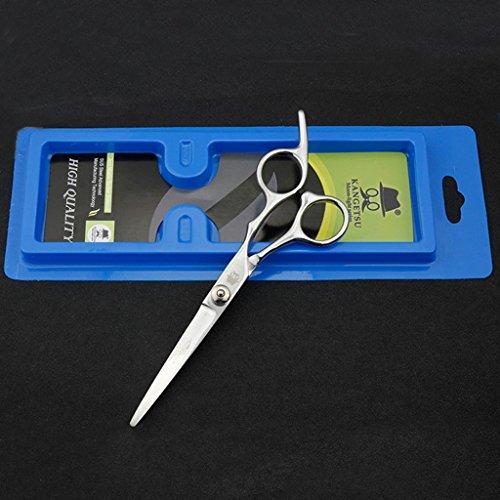 TC-GFR Ciseaux pour cheveux coiffeurs ciseaux de coiffure en acier inoxydable de 6 pouces Ciseaux plats Professionnels ciseaux à cheveux Outils de coiffure