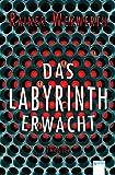 Das Labyrinth erwacht