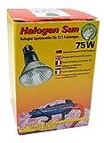 Lucky Reptile HS-75 Halogen Sun
