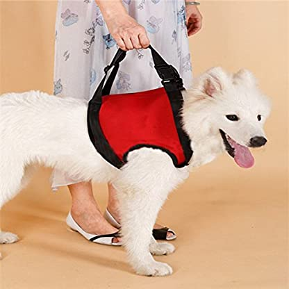 Doggie Style Store Front Legs Support Large Dog Harness Hoist Lift Lifting Sling Elderly Pet Carrier – 3 Sizes 1
