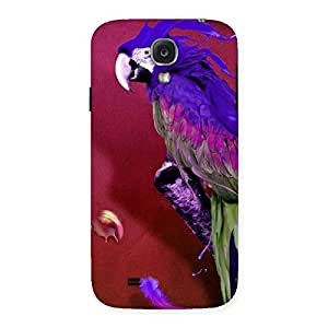 Magic Parrot Multicolor Back Case Cover for Samsung Galaxy S4