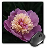Houk Photography - Flowers - Yellow Pink flower - Macro - MousePad (mp_202403_1)