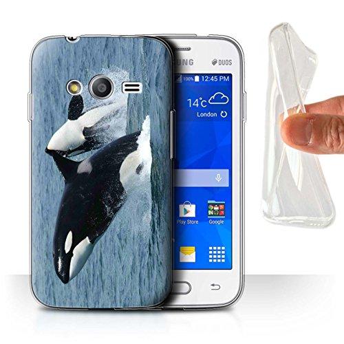 Stuff4 Gel TPU Hülle / Case für Samsung Galaxy S Duos 3/G313 / Schwertwal/Orca Muster / Marine Tierwelt Kollektion (Orca-duo)