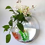Parete acrilica Fish Bowl creativo Hanging serbatoio trasparente bolla acquario Vaso da fiori decorazione domestica
